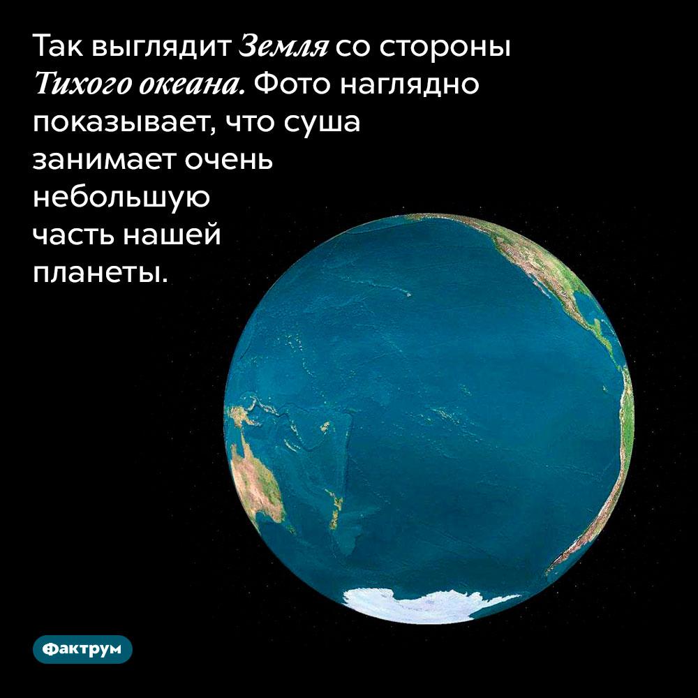 Как выглядит Земля состороны Тихого океана. Фото наглядно показывает, что суша занимает очень небольшую часть нашей планеты.