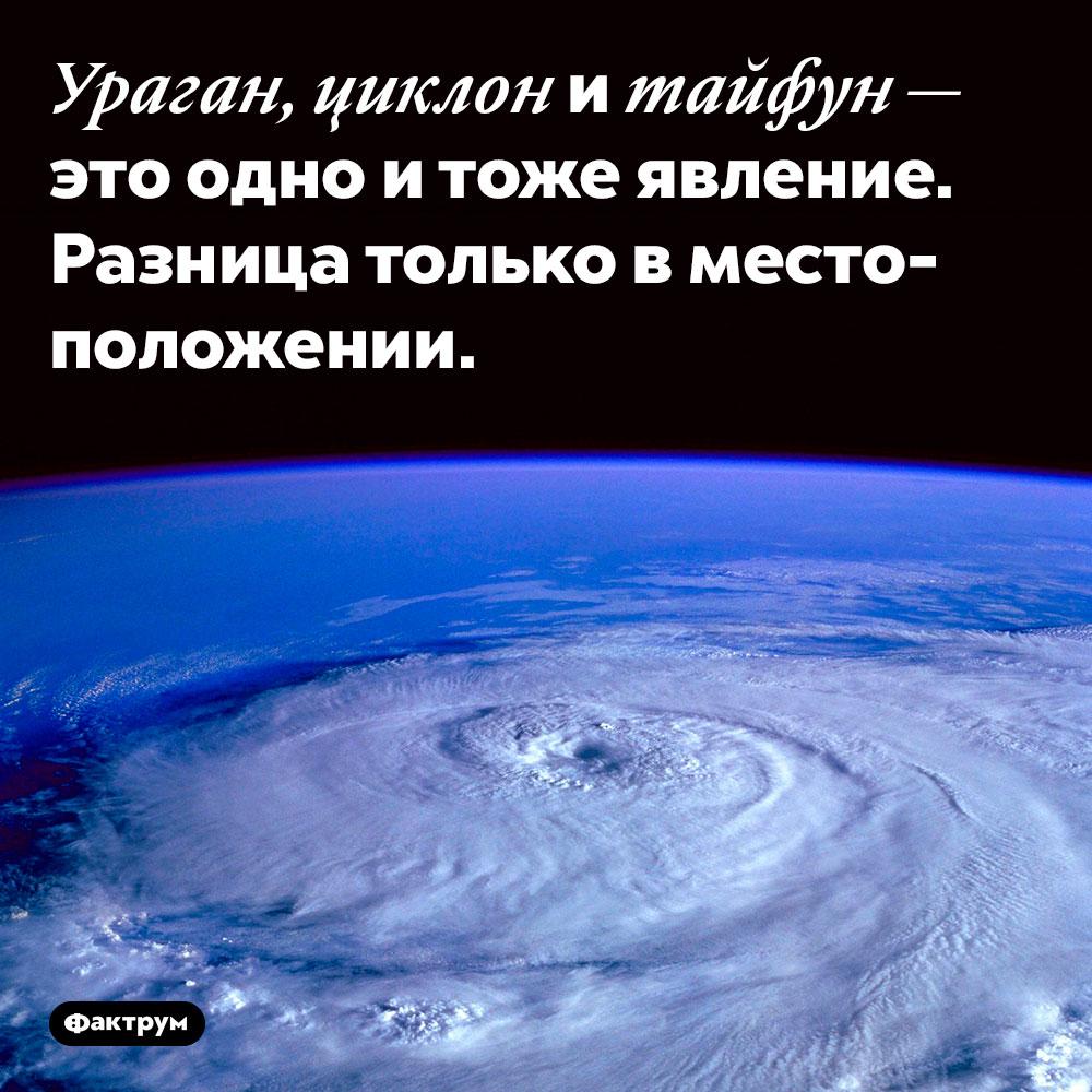 Ураган, циклон и тайфун — разные названия одного явления. Ураган, циклон и тайфун — это одно и тоже природное явление. Разница только в местоположении.