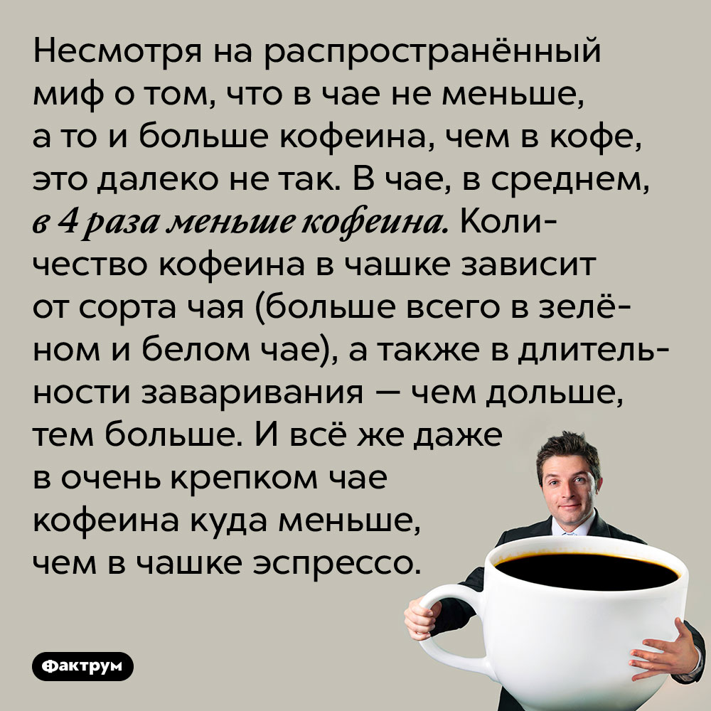 Вчае значительно меньше кофеина, чем вкофе. Несмотря на распространённый миф о том, что в чае не меньше, а то и больше кофеина, чем в кофе, это далеко не так. В чае, в среднем, в 4 раза меньше кофеина. Количество кофеина в чашке зависит от сорта чая (больше всего в зелёном и белом чае), а также в длительности заваривания — чем дольше, тем больше. И всё же даже в очень крепком чае кофеина куда меньше, чем в чашке эспрессо.