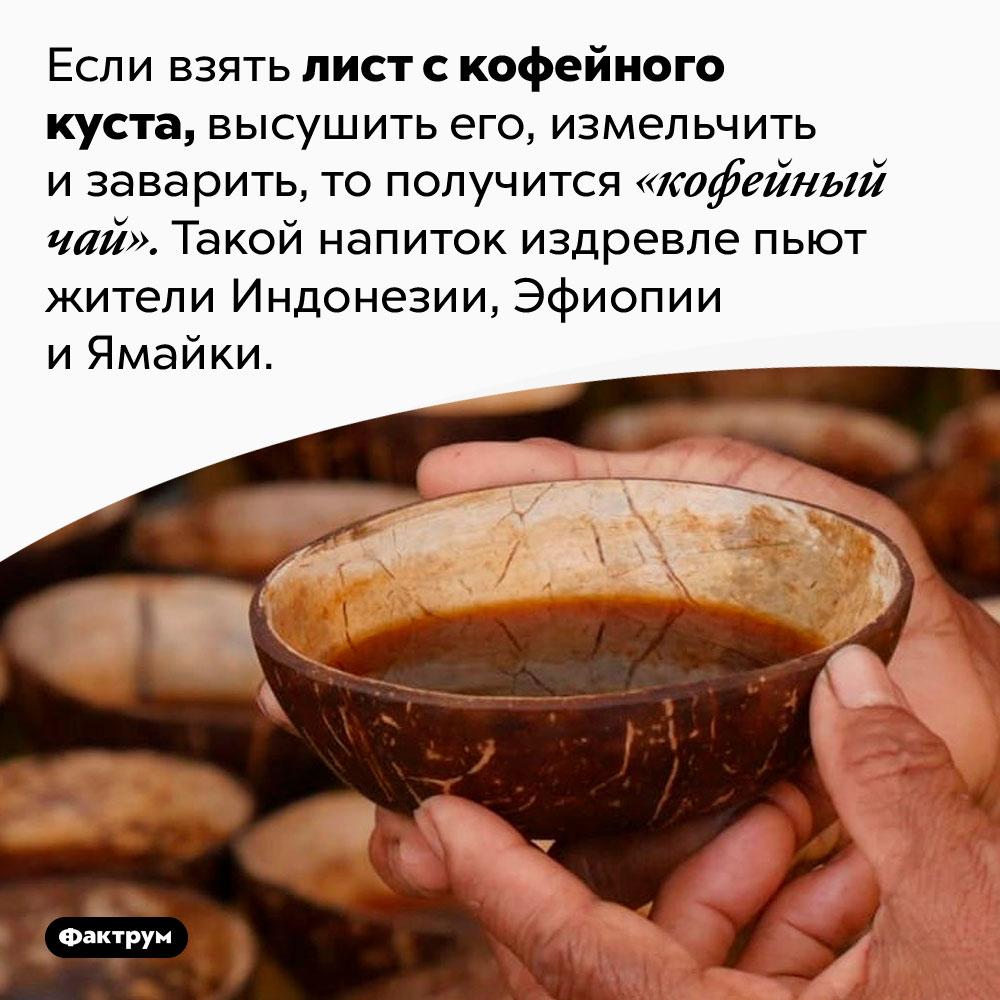 Существует «кофейный чай». Если взять лист с кофейного куста, высушить его, измельчить и заварить, то получится «кофейный чай». Такой чай издревле пьют жители Индонезии, Эфиопии и Ямайки.
