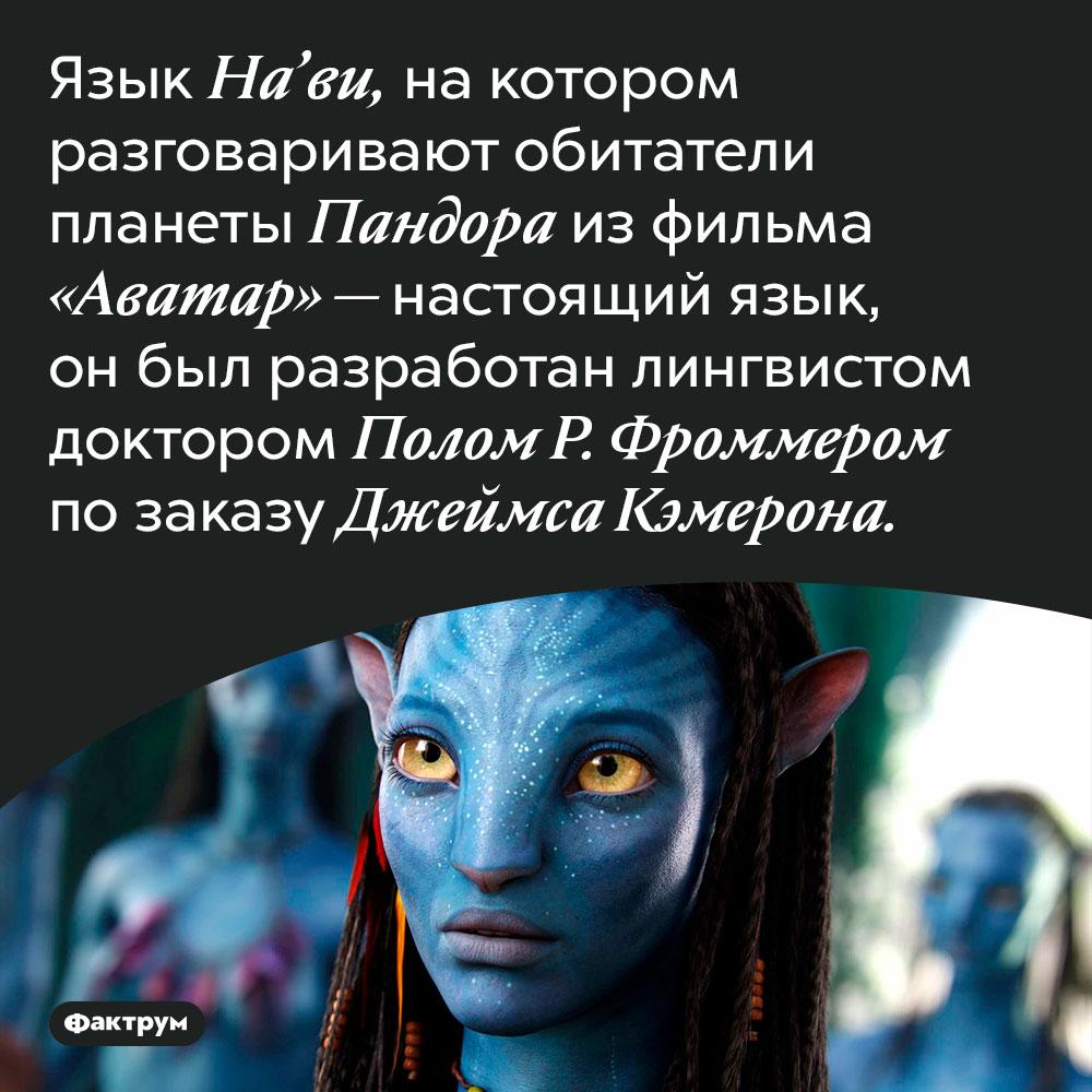 Язык героев фильма «Аватар» был специально разработан для этого фильма. Язык На'ви, на котором разговаривают обитатели планеты Пандора из фильма «Аватар» — настоящий язык, он был разработан лингвистом доктором Полом Р. Фроммером по заказу Джеймса Кэмерона.