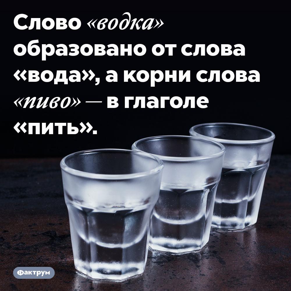 Слова «водка» и«пиво» связаны сводой ипитьём. Слово «водка» образовано от слова «вода», а корни слова «пиво» — в глаголе «пить».