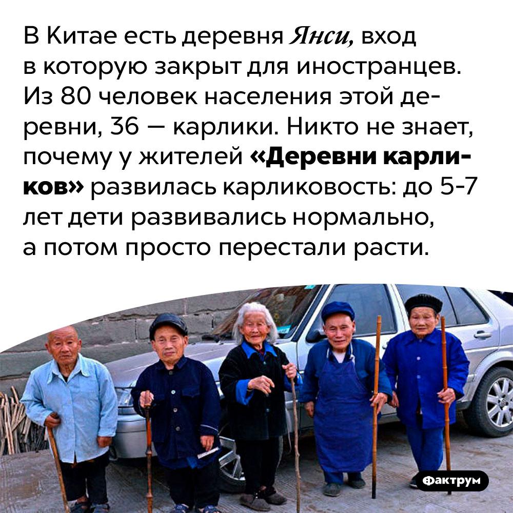 ВКитае есть «Деревня карликов». В Китае есть деревня Янси, вход в которую закрыт для иностранцев. Из 80 человек населения этой деревни, 36 — карлики. Никто не знает, почему у жителей «Деревни карликов» развилась карликовость: до 5-7 лет дети развивались нормально, а потом просто перестали расти.