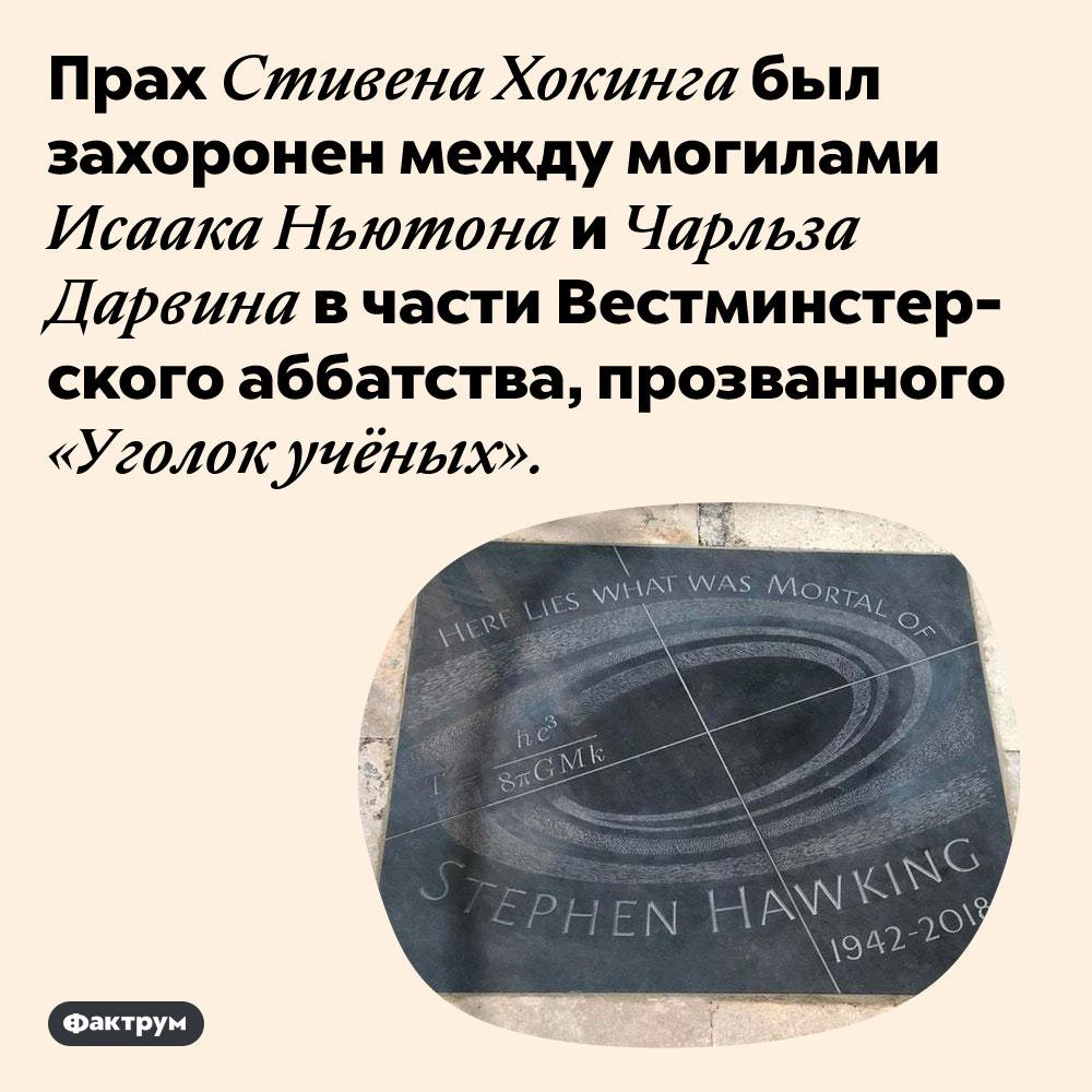 Хокинг захоронен там же, где Ньютон иДарвин. Прах Стивена Хокинга был захоронен между могилами Исаака Ньютона и Чарльза Дарвина в части Вестминстерского аббатства, прозванного «Уголок учёных».