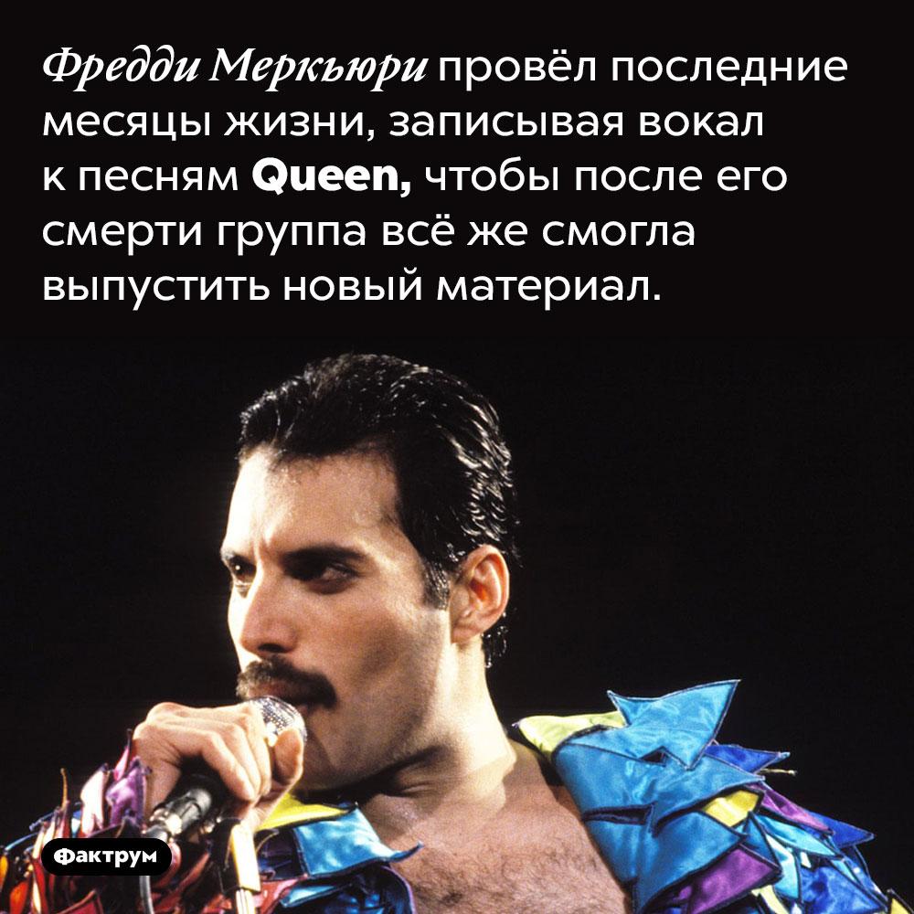 Фредди Меркьюри досамой смерти записывал вокальные партии для нового альбома Queen. Фредди Меркьюри провёл последние месяцы жизни, записывая вокал к песням Queen, чтобы после его смерти группа всё же смогла выпустить новый материал.