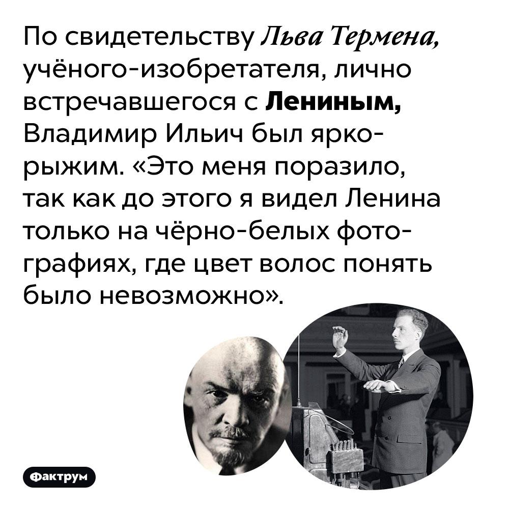 Ленин был ярко-рыжим. По свидетельству Льва Термена, учёного-изобретателя, лично встречавшегося с Лениным, Владимир Ильич был ярко-рыжим. «Это меня поразило, так как до этого я видел Ленина только на чёрно-белых фотографиях, где цвет волос понять было невозможно».