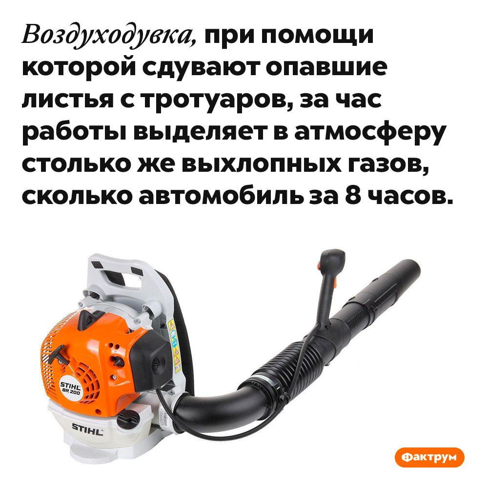 Бензиновые воздуходувки выделяют ввосемь раз больше выхлопных газов, чем автомобили. Воздуходувка, при помощи которой сдувают опавшие листья с тротуаров, за час работы выделяет в атмосферу столько же выхлопных газов, сколько автомобиль за 8 часов.