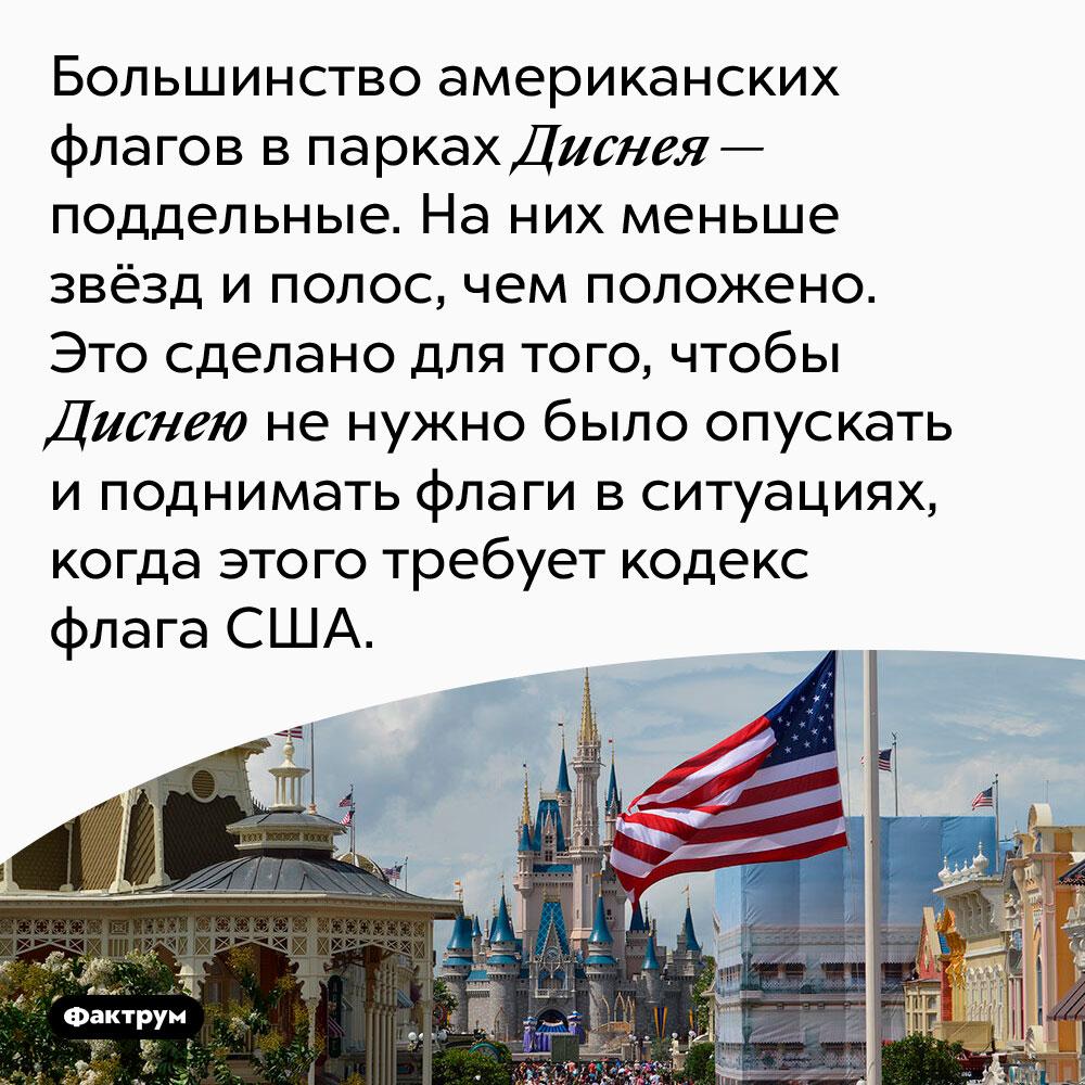 Американские флаги вДиснейлендах — поддельные. Большинство американских флагов в парках Диснея — поддельные. На них меньше звёзд и полос, чем положено. Это сделано для того, чтобы Disney не нужно было опускать и поднимать флаги в ситуациях, когда этого требует кодекс флага США.