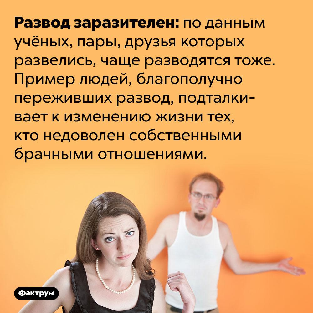 Развод ваших друзей повышает вероятность вашего развода. Развод заразителен: по данным учёных, пары, друзья которых развелись, чаще разводятся тоже. Пример людей, благополучно переживших развод, подталкивает к изменению жизни тех, кто недоволен собственными брачными отношениями.