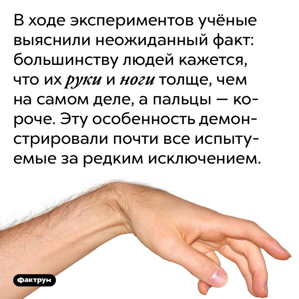 Людям кажется, что их руки иноги толще, чем есть насамом деле. В ходе экспериментов учёные выяснили неожиданный факт: большинству людей кажется, что их руки и ноги толще, чем на самом деле, а пальцы — короче. Эту особенность демонстрировали почти все испытуемые за редким исключением.