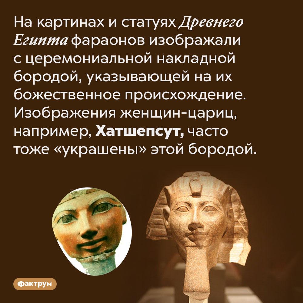 Древнеегипетских царей ицариц изображали снакладной бородой. На картинах и статуях Древнего Египта фараонов изображали с церемониальной накладной бородой, указывающей на их божественное происхождение. Изображения женщин-цариц, например, Хатшепсут, часто тоже «украшены» этой бородой.