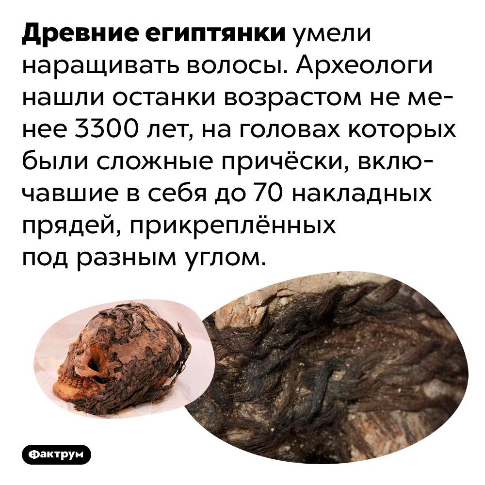 Древние египтянки наращивали волосы. Древние египтянки умели наращивать волосы. Археологи нашли останки возрастом не менее 3300 лет, на головах которых были сложные причёски, включавшие в себя до 70 накладных прядей, прикреплённых под разным углом.