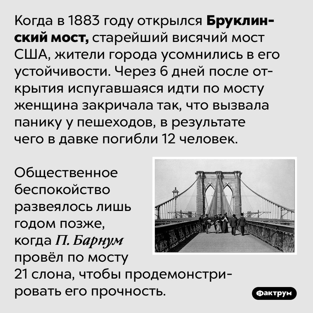 Бруклинский мост поначалу пугал людей. Когда в 1883 году открылся Бруклинский мост, старейший висячий мост США, жители города усомнились в его устойчивости. Через 6 дней после открытия испугавшаяся идти по мосту женщина закричала так, что вызвала панику у пешеходов, в результате чего в давке погибли 12 человек.  Общественное беспокойство развеялось лишь годом позже, когда П. Барнум провёл по мосту 21 слона, чтобы продемонстрировать его прочность.