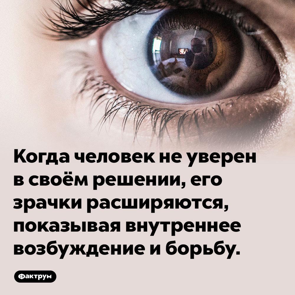 Если вы неуверены всвоём решении, ваши зрачки расширяются. Когда человек не уверен в своём решении, его зрачки расширяются, показывая внутреннее возбуждение и борьбу.