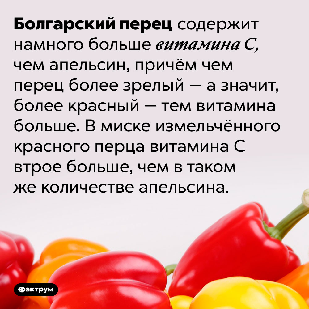 Болгарский перец богат витаминомC. Болгарский перец содержит намного больше витамина С, чем апельсин, причём чем перец более зрелый — а значит, более красный — тем витамина больше. В миске измельчённого красного перца витамина С втрое больше, чем в таком же количестве апельсина.