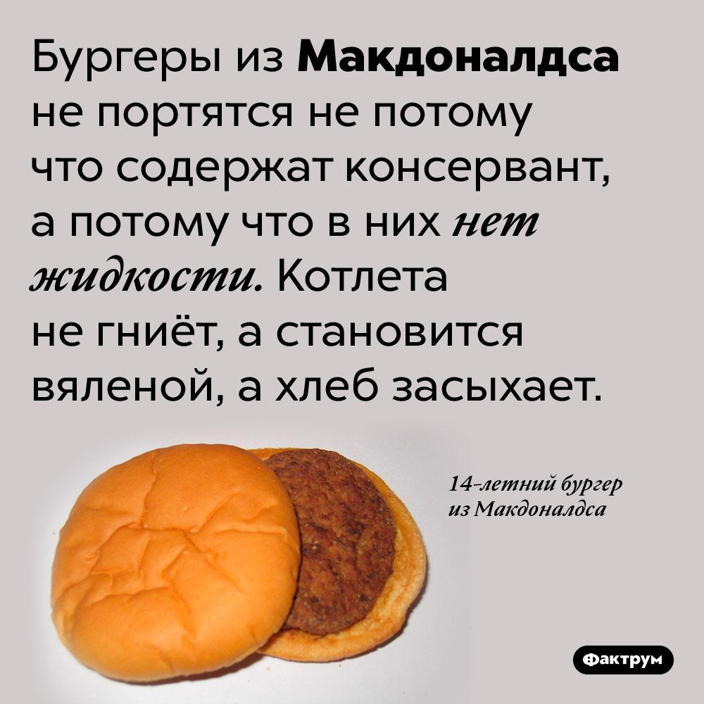 Бургеры изМакдоналдса непортятся потому что вних нет жидкости. Бургеры из Макдоналдса не портятся не потому что содержат консервант, а потому что в них нет жидкости. Котлета не гниёт, а становится вяленой, а хлеб засыхает.