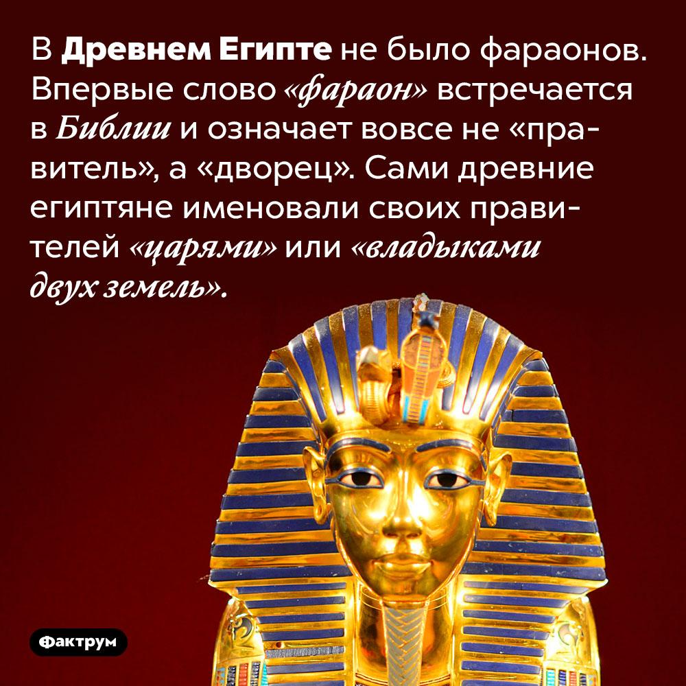 ВДревнем Египте небыло фараонов. В Древнем Египте не было фараонов. Впервые слово «фараон» встречается в Библии и означает вовсе не «правитель», а «дворец». Сами древние египтяне именовали своих правителей «царями» или «владыками двух земель».