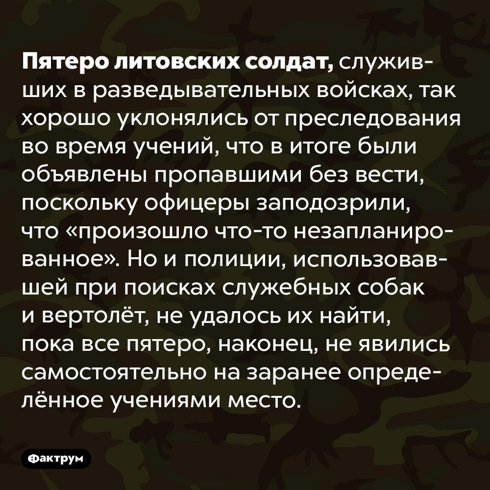 Пятеро литовских солдат-разведчиков так хорошо прятались отпреследования, что были сочтены пропавшими без вести. Пятеро литовских солдат, служивших в разведывательных войсках, так хорошо уклонялись от преследования во время учений, что в итоге были объявлены пропавшими без вести, поскольку офицеры заподозрили, что «произошло что-то незапланированное». Но и полиции, использовавшей при поисках служебных собак и вертолёт, не удалось их найти, пока все пятеро, наконец, не явились самостоятельно на заранее определённое учениями место.