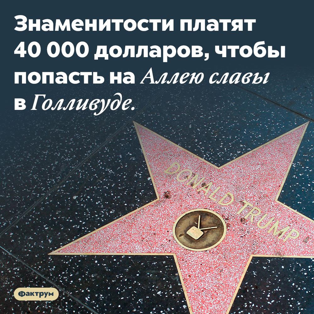 Звезда наголливудской Алее славы — это платная услуга. Знаменитости платят 40 000 долларов, чтобы попасть на Аллею славы в Голливуде.