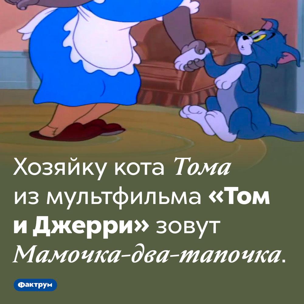 Хозяйку Тома зовут Мамочка-два-тапочка. Хозяйку кота Тома из мультфильма «Том и Джерри» зовут Мамочка-два-тапочка.