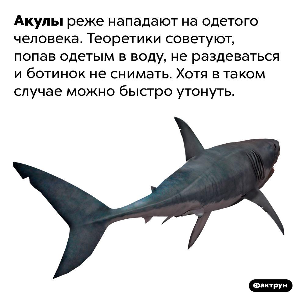 Акулы реже нападают наодетого человека. Теоретики советуют, попав одетым вводу, нераздеваться иботинок неснимать. Хотя втаком случае можно быстро утонуть.