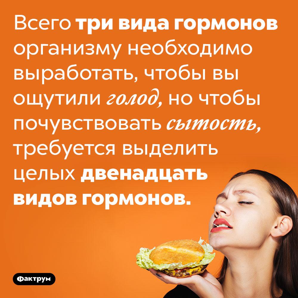 С гормональной точки зрения, вызвать голод вчетыре раза проще, чем чувство сытости. Всего три вида гормонов организму необходимо выработать, чтобы вы ощутили голод, но чтобы почувствовать сытость, требуется выделить целых двенадцать видов гормонов.