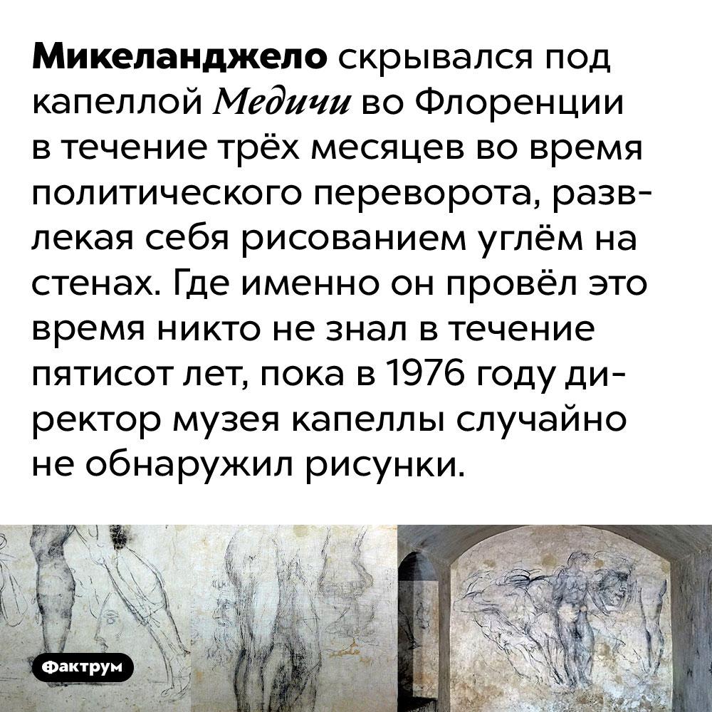 Микеланджело три месяца просидел вподвале, скрываясь отгосударственного переворота. Микеланджело скрывался под капеллой Медичи во Флоренции в течение трёх месяцев во время политического переворота, развлекая себя рисованием углём на стенах. Где именно он провёл это время никто не знал в течение пятисот лет, пока в 1976 году директор музея капеллы случайно не обнаружил рисунки.