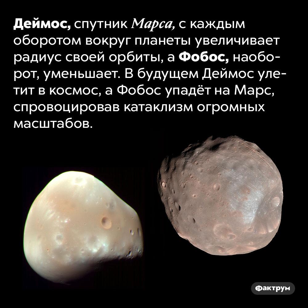 Что случится соспутниками Марса Деймосом иФобосом. Деймос, спутник Марса, с каждым оборотом вокруг планеты увеличивает радиус своей орбиты, а Фобос, наоборот, уменьшает. В будущем Деймос улетит в космос, а Фобос упадёт на Марс, спровоцировав катаклизм огромных масштабов.