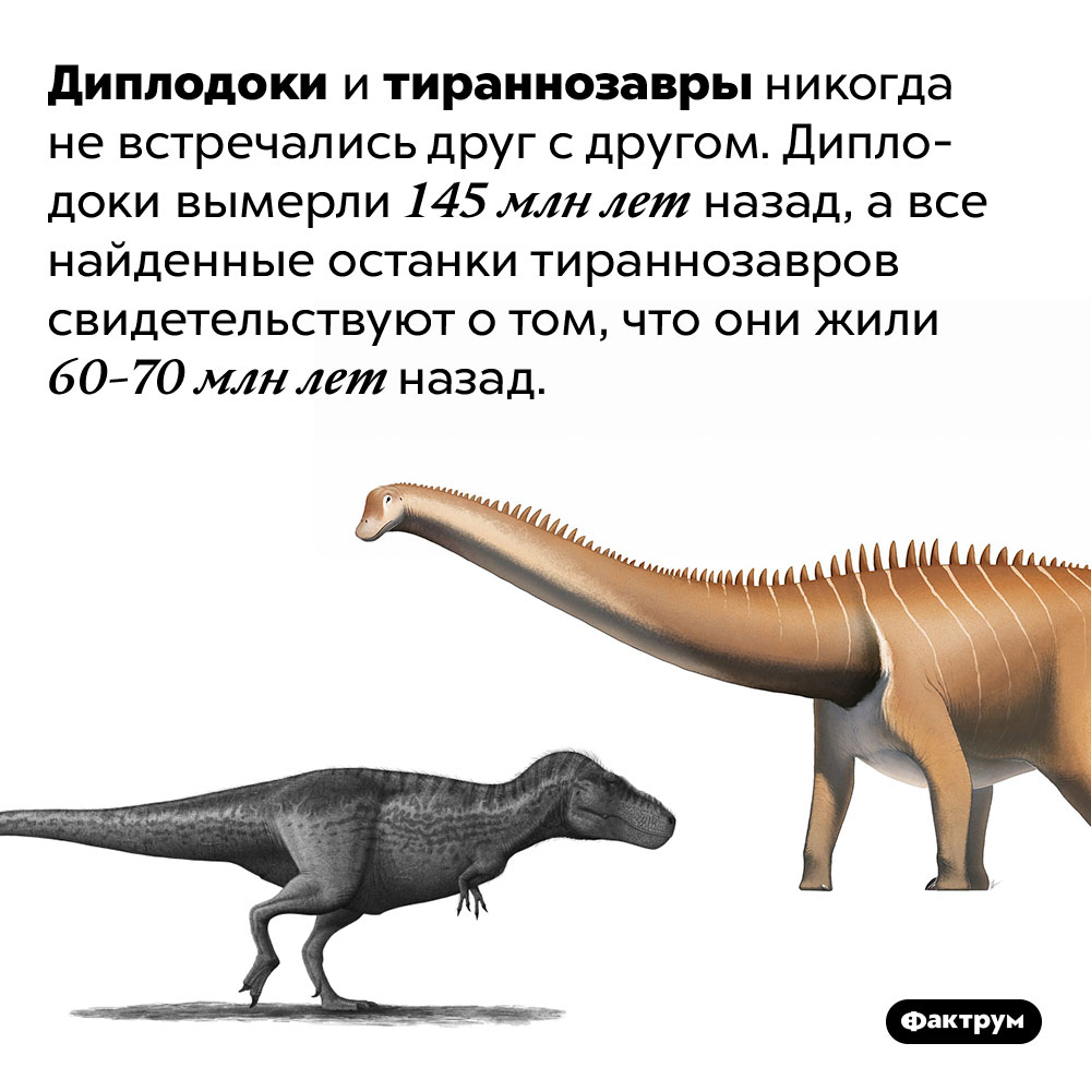 Диплодоки вымерли за70млн лет дотираннозавров. Диплодоки и тираннозавры никогда не встречались друг с другом. Диплодоки вымерли 145 млн лет назад, а все найденные останки тираннозавров свидетельствуют о том, что они жили 60-70 млн лет назад.