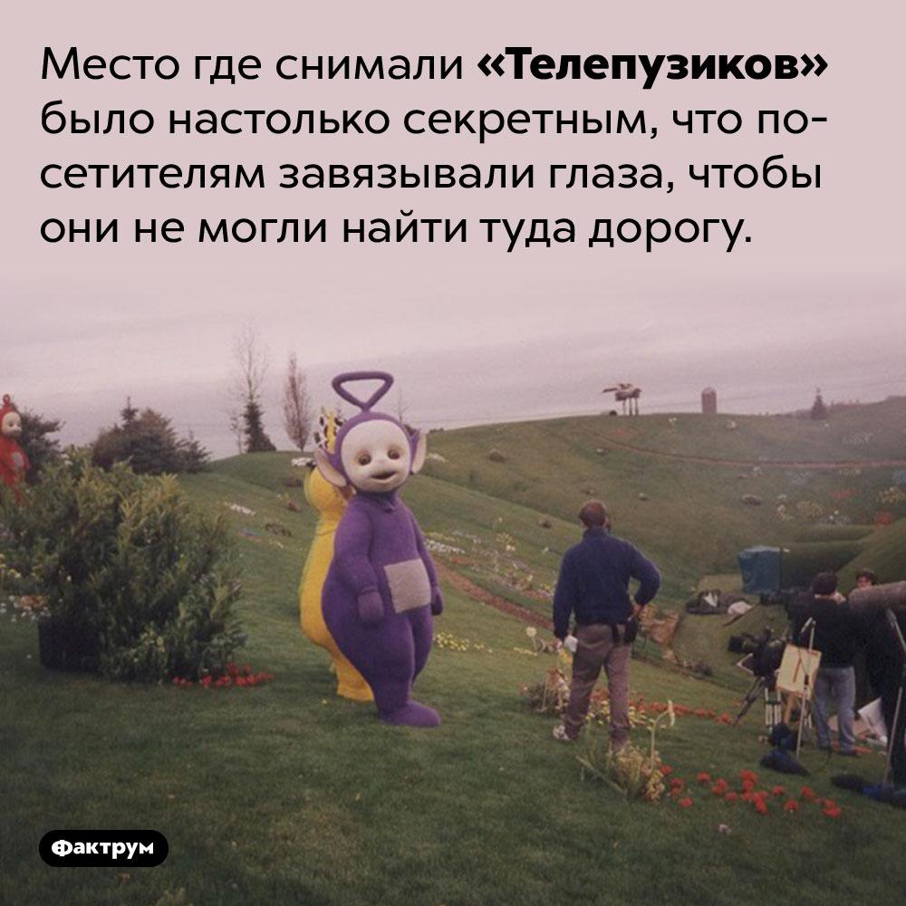 Место съёмки «Телепузиков» держали втайне. Место где снимали «Телепузиков» было настолько секретным, что посетителям завязывали глаза, чтобы они не могли найти туда дорогу.