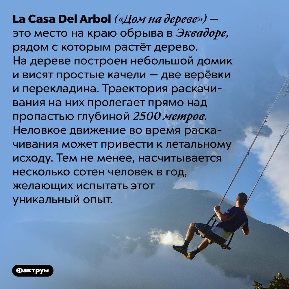 ВЭквадоре можно покачаться накачелях над пропастью. La Casa Del Arbol («Дом на дереве») — это место на краю обрыва в Эквадоре, рядом с которым растёт дерево. На дереве построен небольшой домик и висят простые качели — две верёвки и перекладина. Траектория раскачивания на них пролегает прямо над пропастью глубиной 2500 метров. Неловкое движение во время раскачивания может привести к летальному исходу. Тем не менее, насчитывается несколько сотен человек в год, желающих испытать этот уникальный опыт.