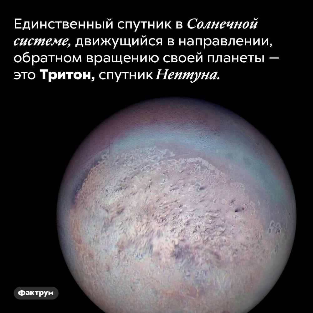 Единственный всвоем роде спутник вСолнечной системе. Единственный спутник в Солнечной системе, движущийся в направлении, обратном вращению своей планеты — это Тритон, спутник Нептуна.