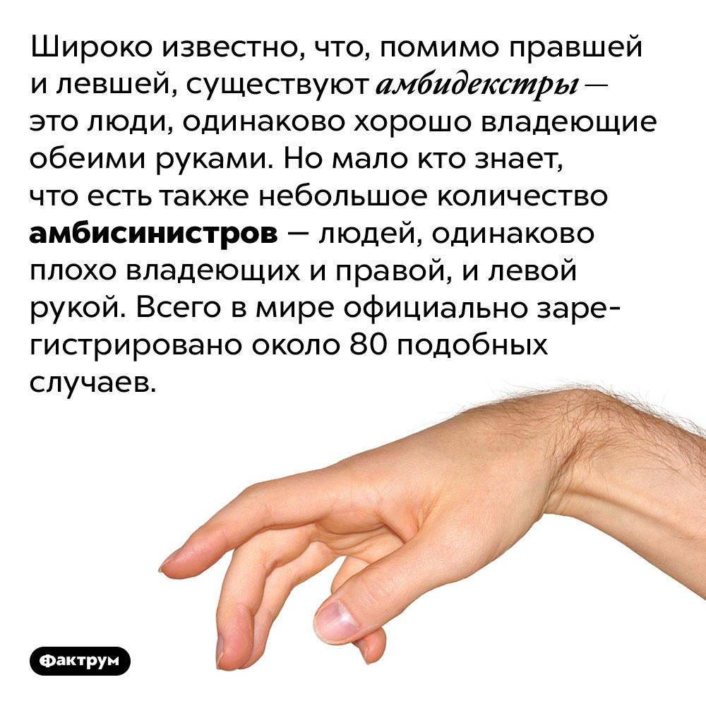 Как называются люди, плохо владеющие своими руками?. Широко известно, что, помимо правшей и левшей, существуют амбидекстры — это люди, одинаково хорошо владеющие обеими руками. Но мало кто знает, что есть также небольшое количество амбисинистров — людей, одинаково плохо владеющих и правой, и левой рукой. Всего в мире официально зарегистрировано около 80 подобных случаев.