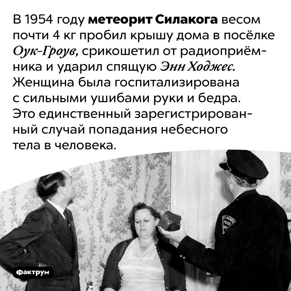 Науке известен всего один случай попадания небесного тела вчеловека. В 1954 году метеорит Силакога весом почти 4 кг пробил крышу дома в посёлке Оук-Гроув, срикошетил от радиоприёмника и ударил спящую Энн Ходжес. Женщина была госпитализирована с сильными ушибами руки и бедра. Это единственный зарегистрированный случай попадания небесного тела в человека.
