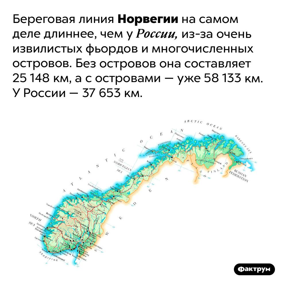 Береговая линия Норвегии длиннее, чем России. Береговая линия Норвегии на самом деле длиннее, чем у России, из-за очень извилистых фьордов и многочисленных островов. Без островов она составляет 25 148 км, а с островами — уже 58 133 км. У России — 37 653 км.