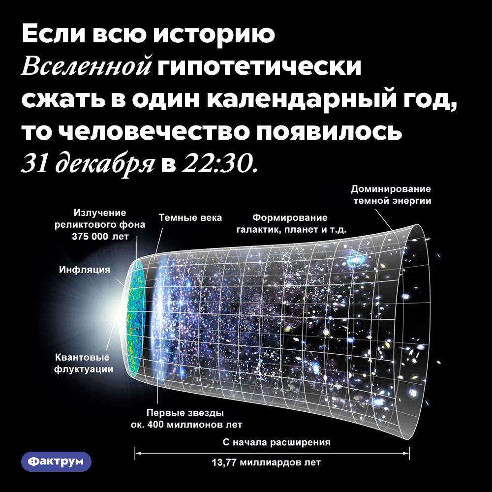 Человечество появилось совсем недавно. Если всю историю Вселенной гипотетически сжать в один календарный год, то человечество появилось 31 декабря в 22:30.