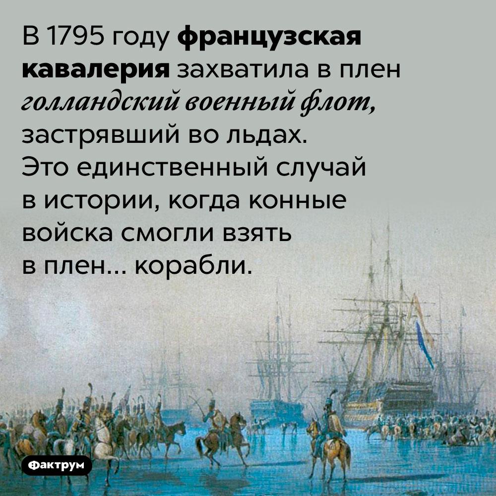 В1795 году французские конные войска взяли вплен… корабли. В 1795 году французская кавалерия захватила в плен голландский военный флот, застрявший во льдах. Это единственный случай в истории, когда конные войска смогли взять в плен… корабли.