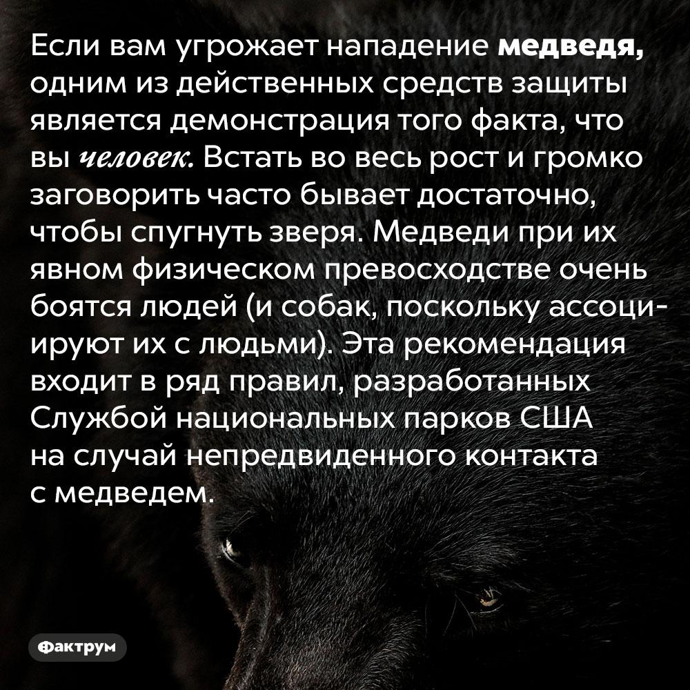 Если навас угрожает напасть медведь, покажите ему, что вы человек. Если вам угрожает нападение медведя, одним из действенных средств защиты является демонстрация того факта, что вы человек. Встать во весь рост и громко заговорить часто бывает достаточно, чтобы спугнуть зверя. Медведи при их явном физическом превосходстве очень боятся людей (и собак, поскольку ассоциируют их с людьми). Эта рекомендация входит в ряд правил, разработанных Службой национальных парков США на случай непредвиденного контакта с медведем.