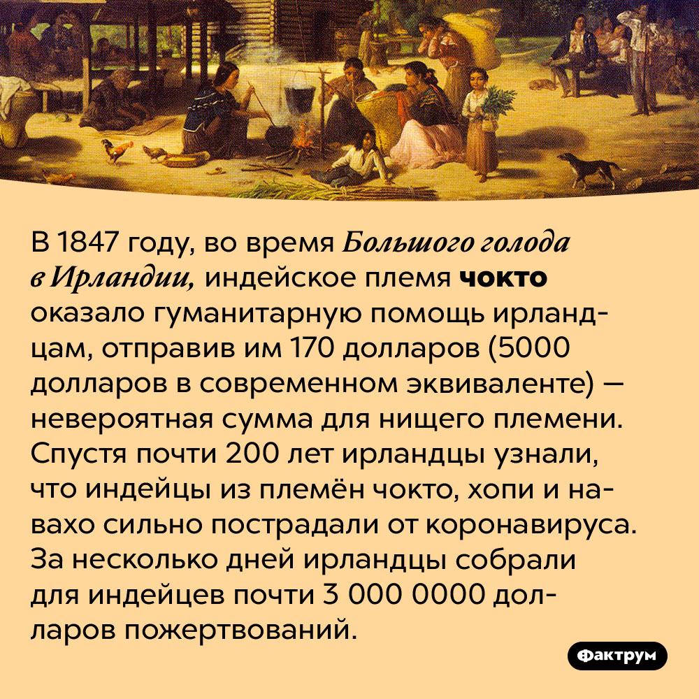 Ирландцы иплемя чокто небросают друг-друга вбеде. В 1847 году, во время Большого голода в Ирландии, индейское племя чокто оказало гуманитарную помощь ирландцам, отправив им 170 долларов (5000 долларов в современном эквиваленте) — невероятная сумма для нищего племени. Спустя почти 200 лет ирландцы узнали, что индейцы из племён чокто, хопи и навахо сильно пострадали от коронавируса. За несколько дней ирландцы собрали для индейцев почти 3 000 0000 долларов пожертвований.