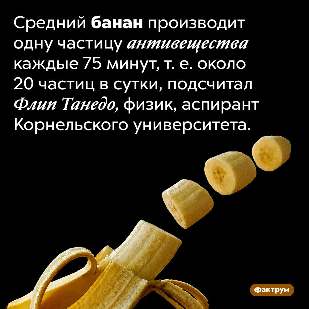 Засутки банан испускает около 20частиц антивещества. Средний банан производит одну частицу антивещества каждые 75 минут, т. е. около 20 частиц в сутки, подсчитал Флип Танедо, физик, аспирант Корнельского университета.