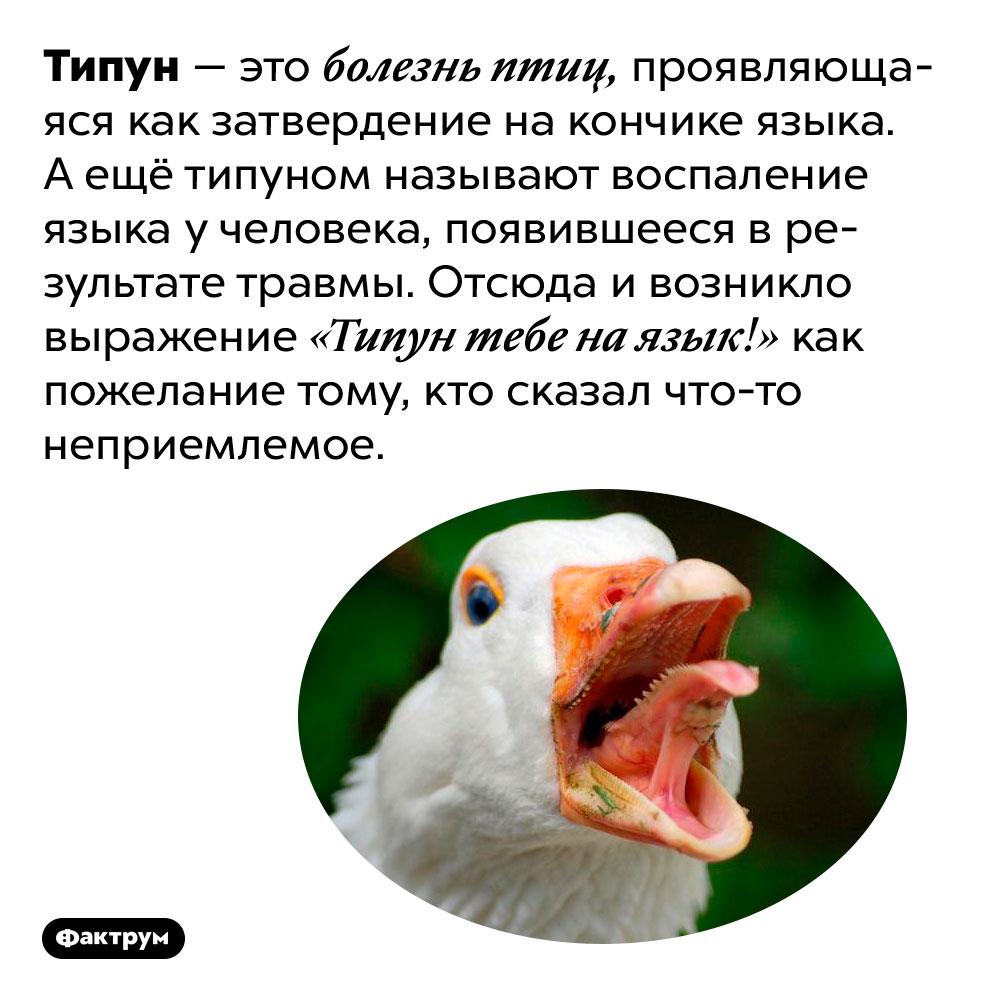 Что такое «типун» изачем его желают «наязык»?. Типун — это болезнь птиц, проявляющаяся как затвердение на кончике языка. А ещё типуном называют воспаление языка у человека, появившееся в результате травмы. Отсюда и возникло выражение «Типун тебе на язык!» как пожелание тому, кто сказал что-то неприемлемое.