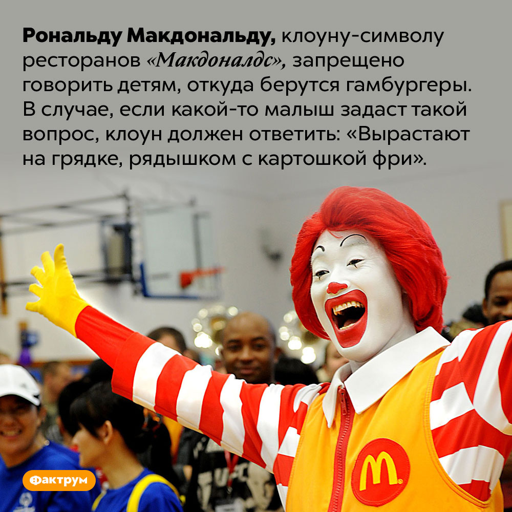 Рональд Макдональд обязан говорить детям, что гамбургеры растут нагрядках. Рональду Макдональду, клоуну-символу ресторанов «Макдоналдс», запрещено говорить детям, откуда берутся гамбургеры. В случае, если какой-то малыш задаст такой вопрос, клоун должен ответить: «Вырастают на грядке, рядышком с картошкой фри».
