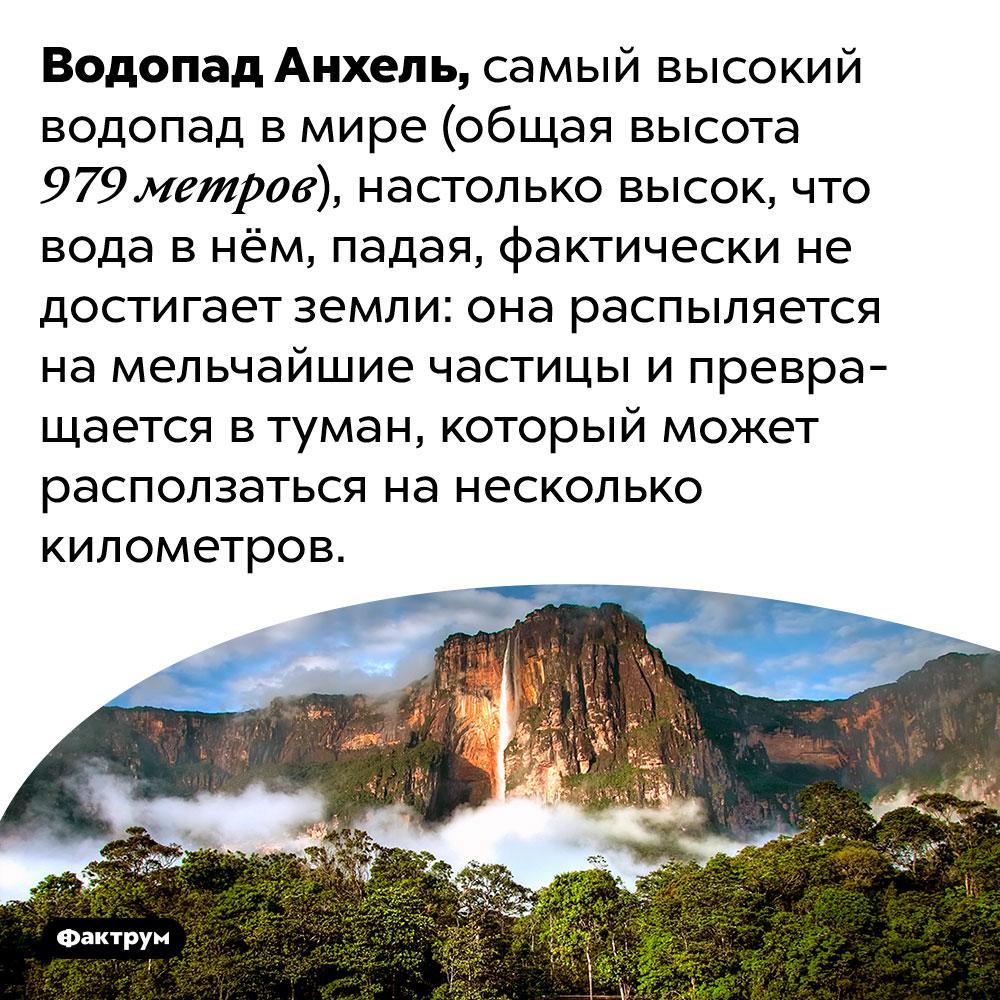 Водопад Анхель настолько высок, что вода внём превращается втуман прежде, чем достигает земли. Водопад Анхель, самый высокий водопад в мире (общая высота 979 метров), настолько высок, что вода в нём, падая, фактически не достигает земли: она распыляется на мельчайшие частицы и превращается в туман, который может расползаться на несколько километров.