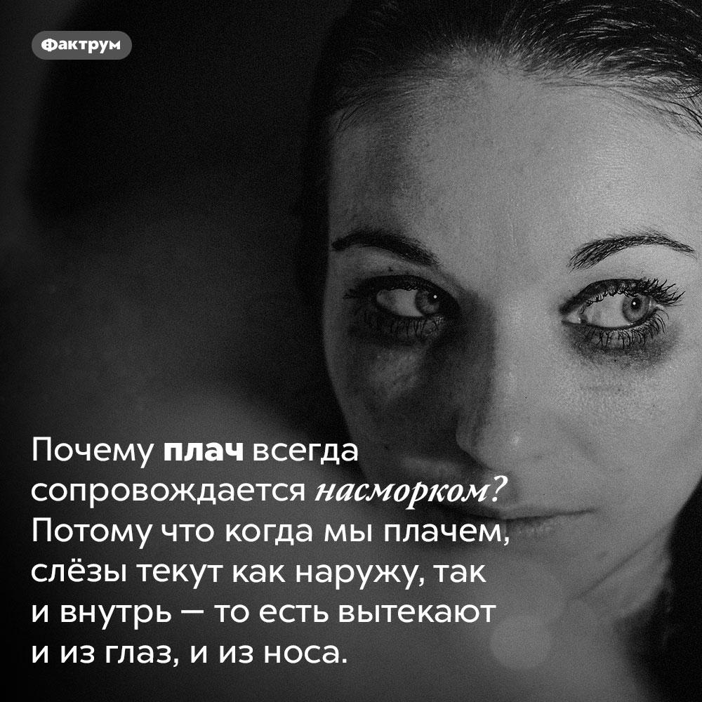 Когда мы плачем, слёзы вытекают ииз глаз, иизноса. Почему плач всегда сопровождается насморком? Потому что когда мы плачем, слёзы текут как наружу, так и внутрь — то есть вытекают и из глаз, и из носа.