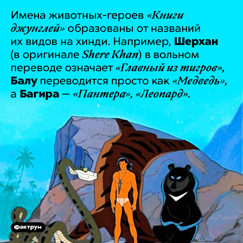 Имена животных из«Книги джунглей» — это просто названия их видов нахинди. Имена животных-героев «Книги джунглей» образованы от названий их видов на хинди. Например, Шерхан (в оригинале Shere Khan) в вольном переводе означает «Главный из тигров», Балу переводится просто как «Медведь», а Багира — «Пантера», «Леопард».