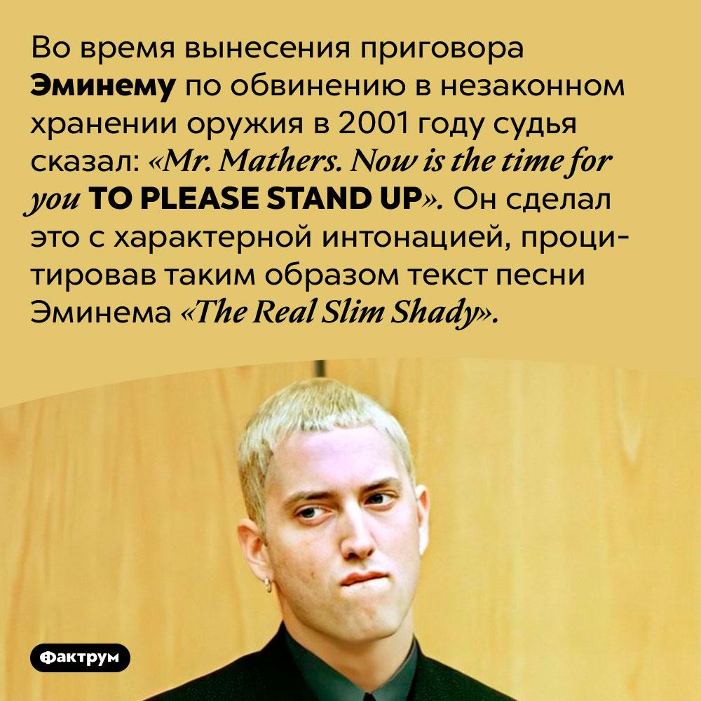 Всуде наЭминемом судья процитировал песню рэпера. Во время вынесения приговора Эминему по обвинению в незаконном хранении оружия в 2001 году судья сказал: «Mr. Mathers. Now is the time for you TO PLEASE STAND UP». Он сделал это с характерной интонацией, процитировав таким образом текст песни Эминема «The Real Slim Shady».