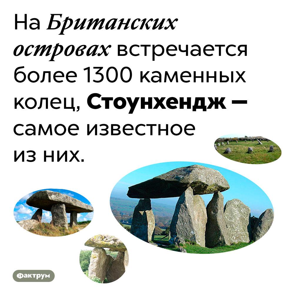 Стоунхендж — только одно изболее чем 1300 каменных колец наБританских островах. На Британских островах встречается более 1300 каменных колец, Стоунхендж — самое известное из них.