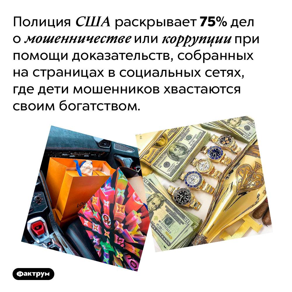 Полиция США действует как Навальный. Полиция США раскрывает 75% дел о мошенничестве или коррупции при помощи доказательств, собранных на страницах в социальных сетях, где дети мошенников хвастаются своим богатством.