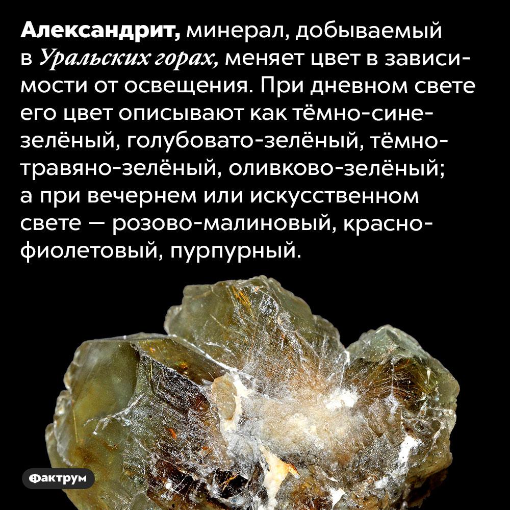Александрит меняет цвет взависимости отосвещения. Александрит, минерал, добываемый в Уральских горах, меняет цвет в зависимости от освещения. При дневном свете его цвет описывают как тёмно-сине-зелёный, голубовато-зелёный, тёмно-травяно-зелёный, оливково-зелёный; а при вечернем или искусственном свете — розово-малиновый, красно-фиолетовый, пурпурный.