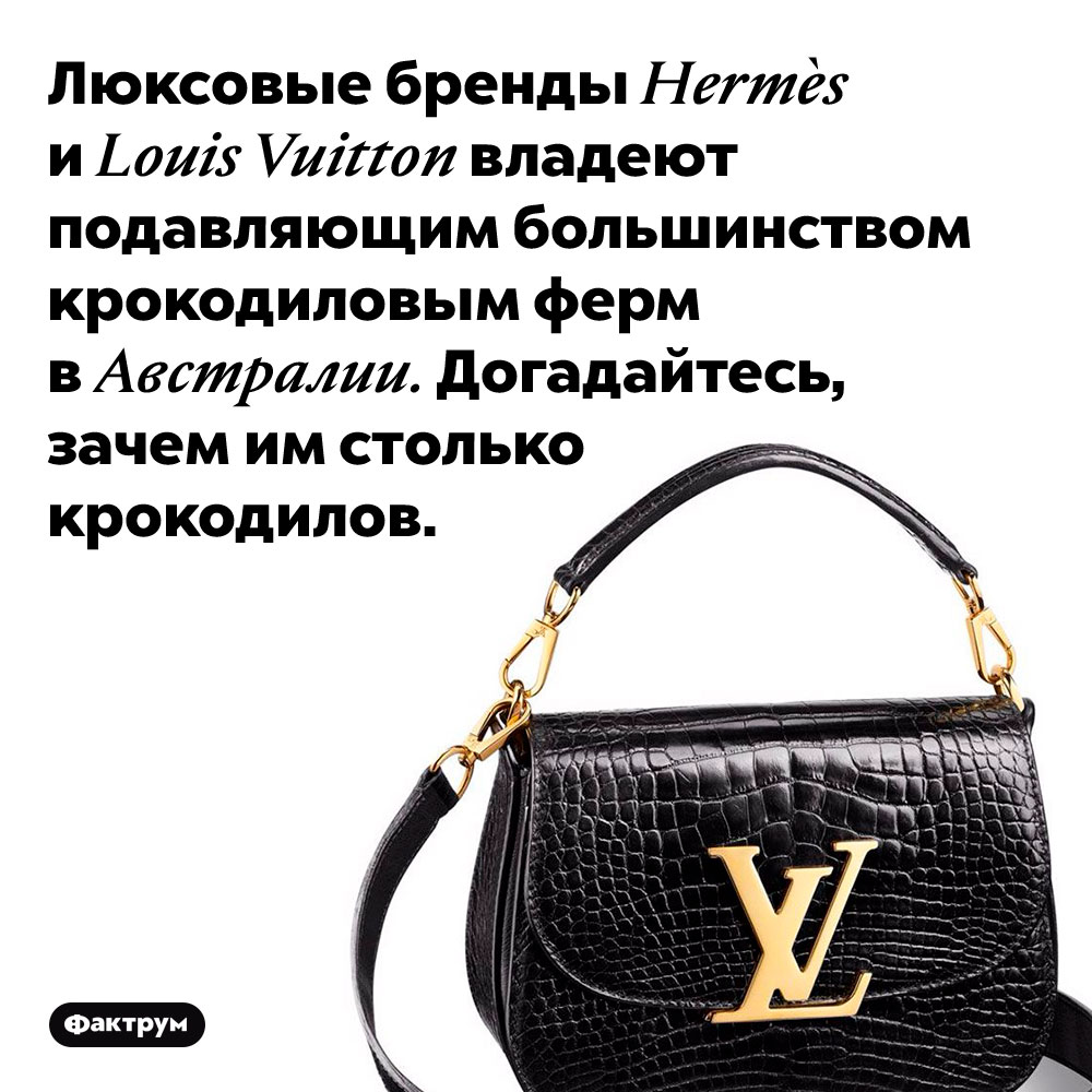 Hermès иLouis Vuitton принадлежат почти все крокодиловые фермы Австралии. Люксовые бренды Hermès и Louis Vuitton владеют подавляющим большинством крокодиловым ферм в Австралии. Догадайтесь, зачем им столько крокодилов.